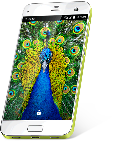 LYF EARTH 2 Smartphone - Fingerprint Sensor Security 1